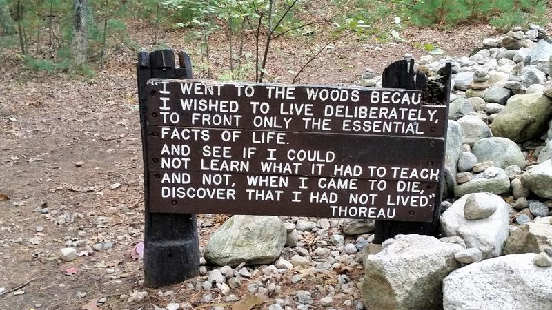 Henry David Thoreau Walden Pond sign - Concord - History's Homes